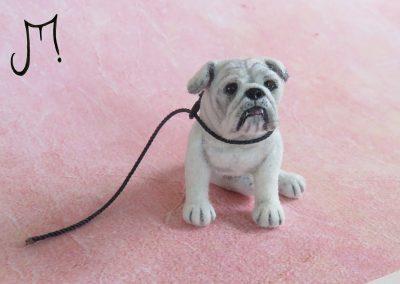 bulldog 009