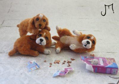 pups x3 070