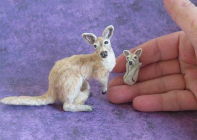 kanga and roo 027