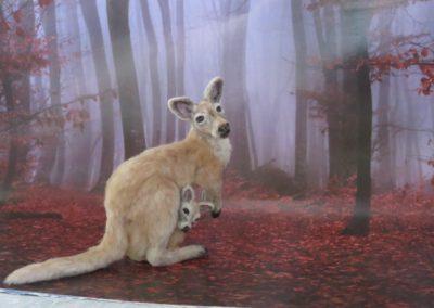 kanga and roo 041