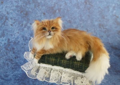 red maine coon 012
