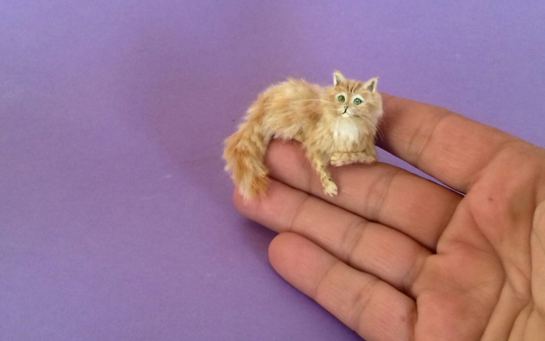 1:12 scale long haired cat