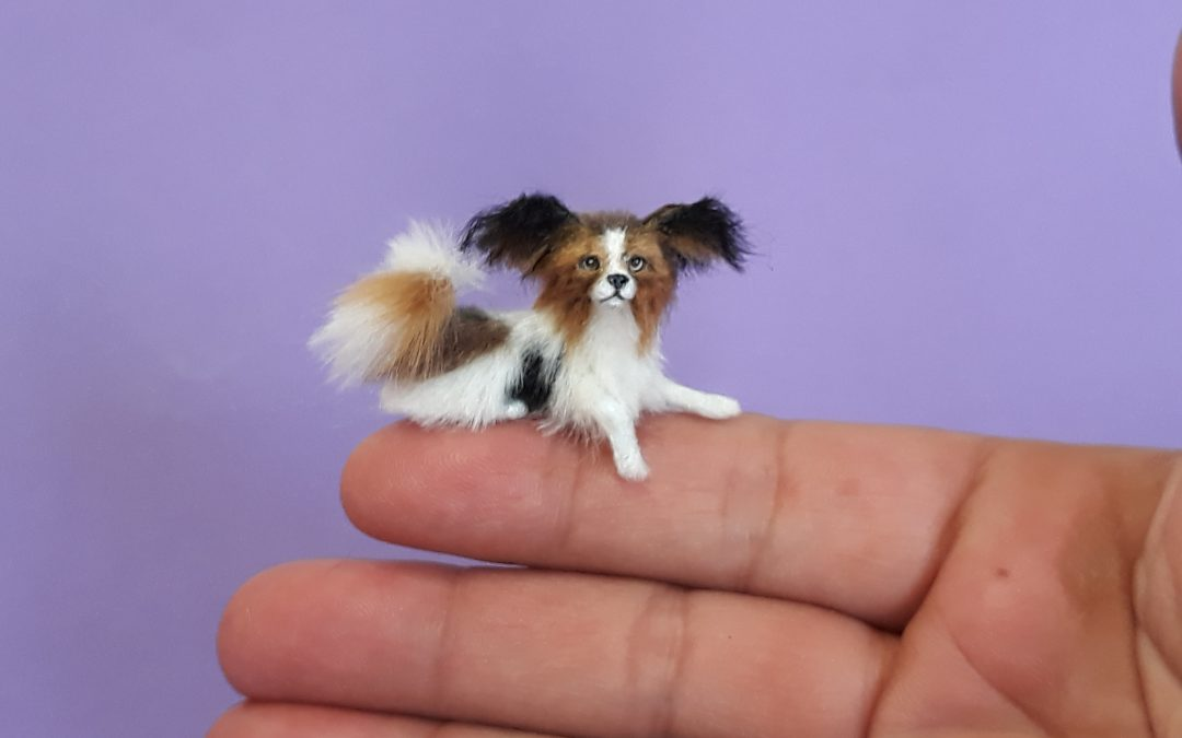 1:12 scale Papillon Dog