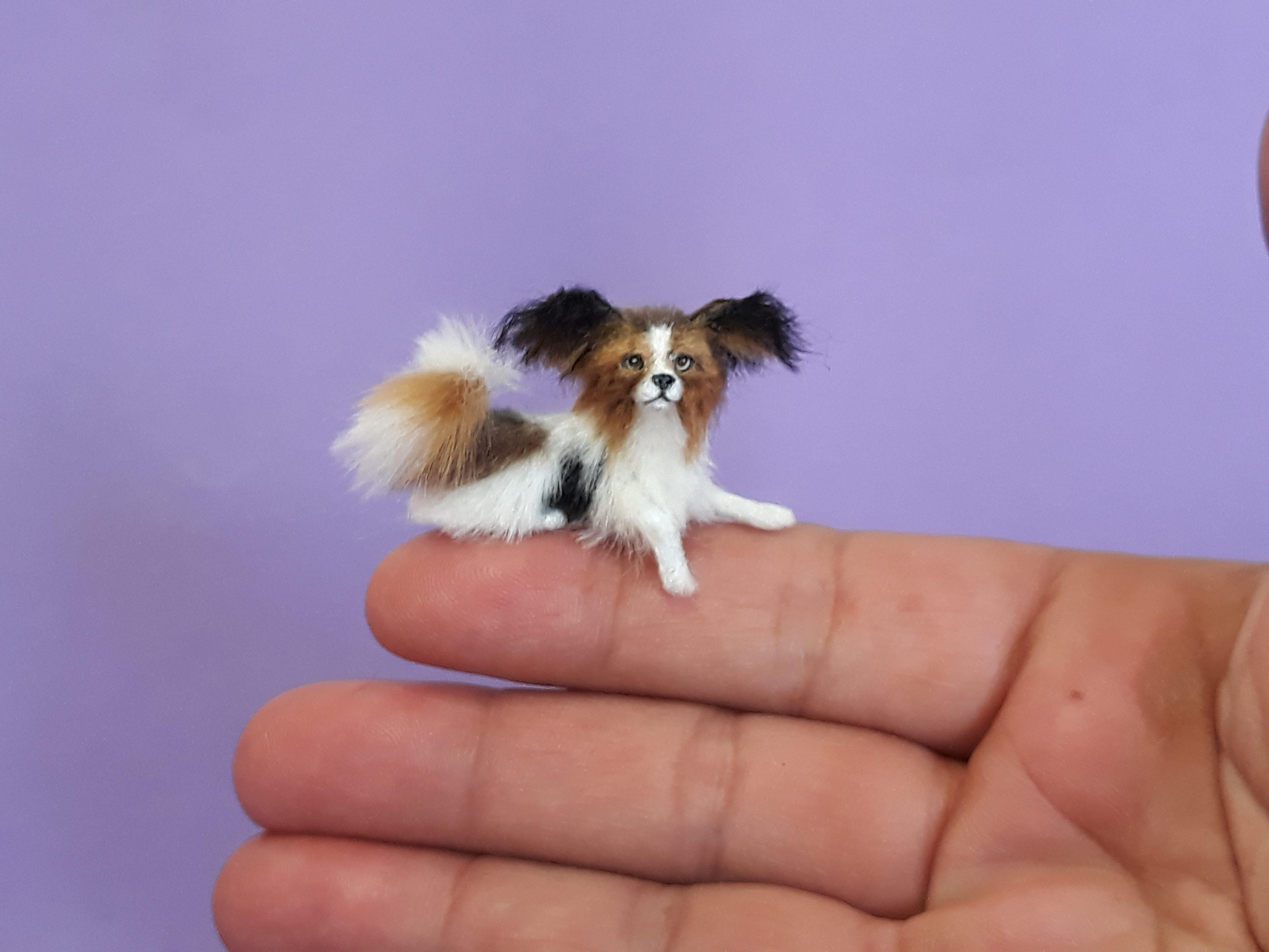 Papillon Dog Miniature Dollhouse Doll House Picture
